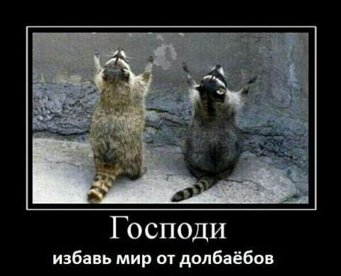 56c47c5b6c754_image(2).thumb.jpg.e1a3d69