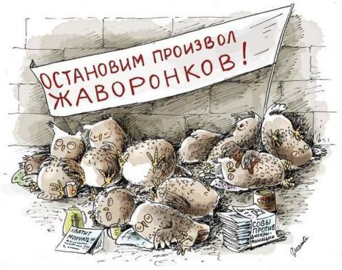 sovy_protiv.thumb.jpg.ec36264804d2408fe875b059db85d902.jpg
